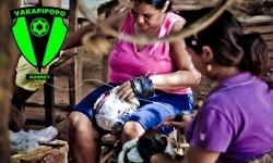 Hoy se presenta Proyecto Vakapipopo|Ko árape ojekuaukáta Proyecto Vakapipopo imagen