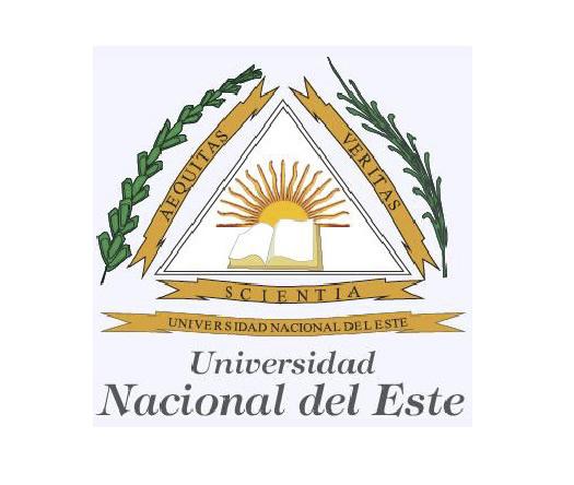 Universidad Nacional del Este imagen