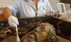 Funcionarios de Cultura realizan un arduo trabajo de restauración del ataúd del General Díaz