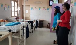 """""""Cuentos en Navidad"""": Escritores visitan Emergencias Médicas y Centro San José de Cluny imagen"""