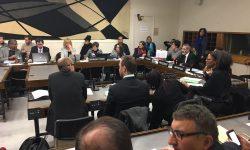 Paraguay preside sesión ordinaria del Comité Intergubernamental de la diversidad cultural de la UNESCO imagen