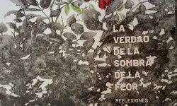 Artista plástica dona libros a la Biblioteca Nacional del Paraguay para su distribución imagen