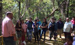 Realizan recorrido histórico en Cerro Corá imagen