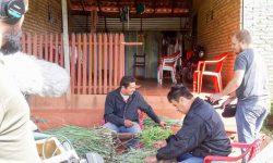 """Sigue rodaje del documental las """"Prácticas y Saberes Tradicionales del Tereré en la cultura del Pohâ Ñana"""" imagen"""