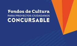 Programa Fondos de Cultura para Proyectos Ciudadanos Proyectos adjudicados – Convocatoria 2020
