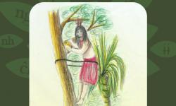 El pensamiento que fluye en las lenguas indígenas vivas en Paraguay imagen