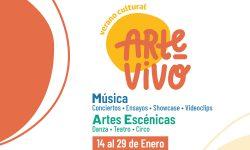 Convocatoria Festival Virtual ARTE VIVO Verano Cultural imagen